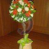 Medelis - bonsas