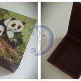Dėžutė 'Panda'