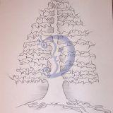 sapnu medis