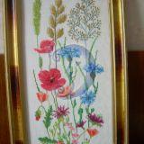 laukų gėlės