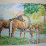 Žirgai2