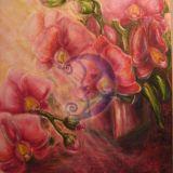 ''orhidejos''