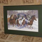 arkliai miške