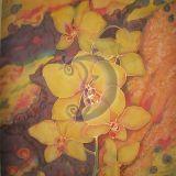 Orhidėjos