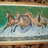 Šuoliuojantys žirgai