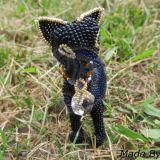 Juodasis katinas