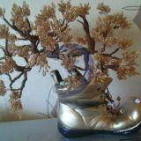 auksinis bonsajus