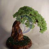 mažasis bonsas
