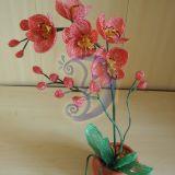 "Orchideja""Laikas myleti""46cm"