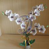 Karaliskoji orchideja5 (58x54cm)