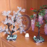 Gėlės, puokštės, medžiai, vainikai