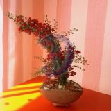 Medis su gėlytėmis