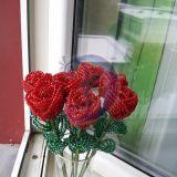 Raudonos rozes is karoliuku
