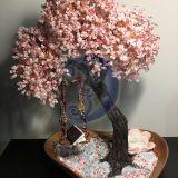 Cherry blossom tree - Sakura