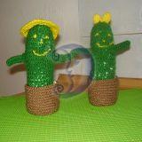 kaktusu porele