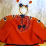Boružėlės, boružės kostiumas
