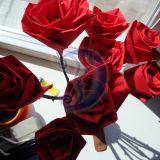 rozes is serveteliu