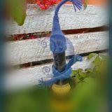 Megztos butelių kepurytės