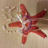 Jūros žvaigždė - pagalvėlė žiedams