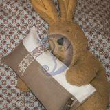 Miegdomoji aromaterapinė pagalvėlė