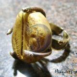 plunksna.fosilija