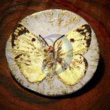 Sagė ženkliukas svajonių drugelis
