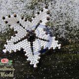 Žiemos gėlė