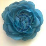 Turkio spalvos rožė