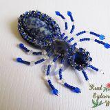 Mėlynas voras su akmeniu