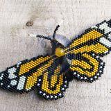 Oranžinis drugelis